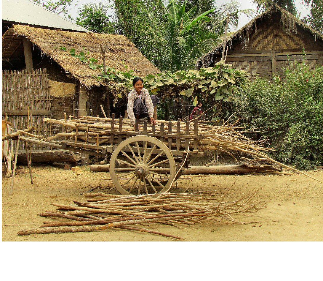 friendly-smile-in-myanmar-2012-by-susan-mikota-dvm